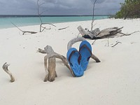 Wow!: Seeking eco-friendly beachwear? Try flip-flops made of algae