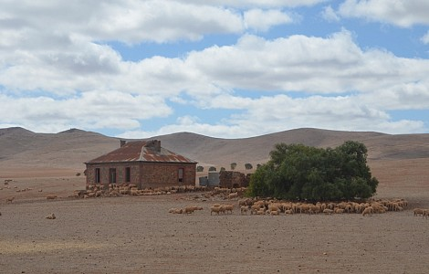THE BIG DRY: HOW AUSTRALIAN CHRISTIANS ARE REACHING OUT IN A