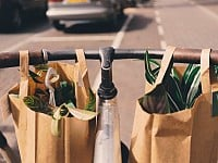 NEW! A SUSTAINABLE LIFE: HERE'S HOW MANY TIMES YOU ACTUALLY NEED TO REUSE YOUR SHOPPING BAGS