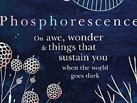 Books: Julia Baird's thousand complicated lights