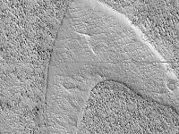 STRANGESIGHTS: THE SEARCH FOR A HAPPY HOME; CAPTAIN KIRK VISITED MARS?; AND, THE DANGERS OF SOCIAL MEDIA FILTERS...