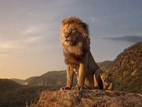 ON THE SCREEN: DISNEY'S PHOTO-REALISTIC SAFARI MEETS BUT NEVER EXCEEDS EXPECTATIONS